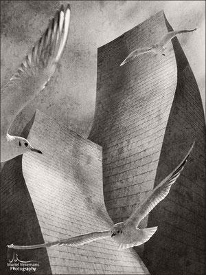 mouettes du Guggenheim Bilbao