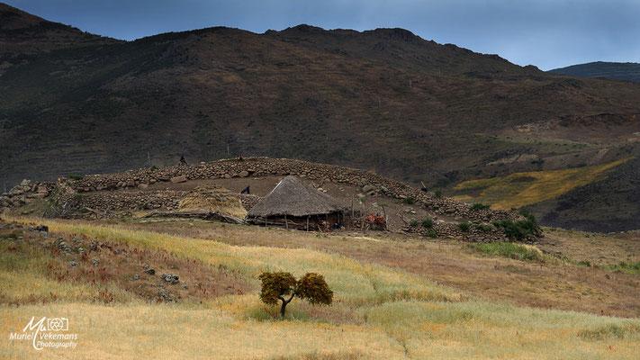 Sur la route des Bale mountains