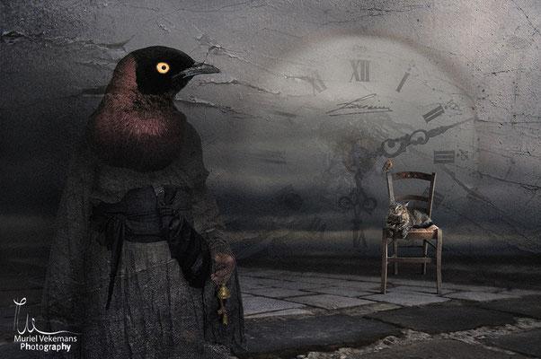 L'heure des oiseaux