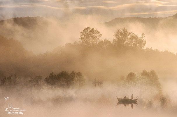 Brume et barques