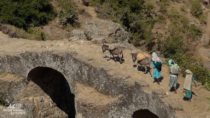 Debré Libanos pont portugais