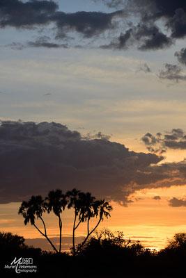 Kenya Samburu