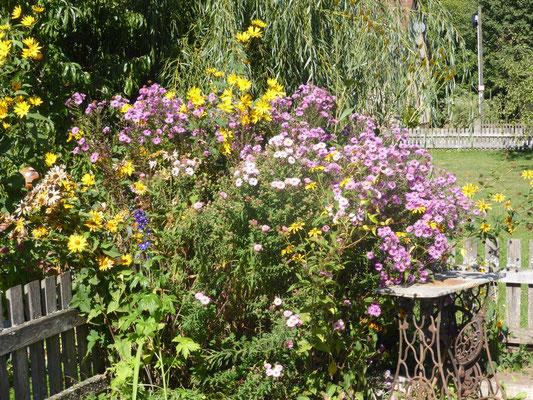 ... Blumengruß bei der Ankunft am Bernerhof ...