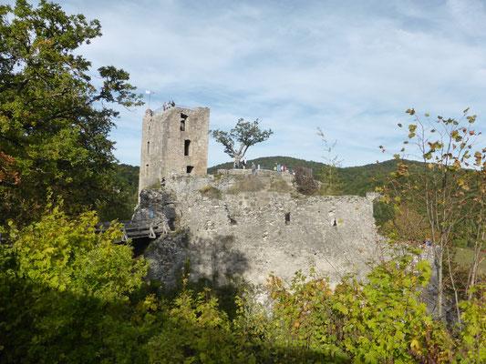 ... Die Burgruine Neideck istbald erreicht ...