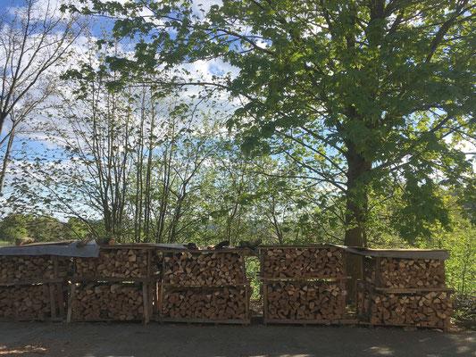 Buchen,- Eschenbrennholz zum Aktionspreis