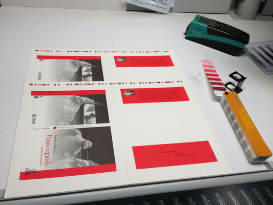 Sortie des premières feuilles imprimées, Plains regards, Francis Julienpont