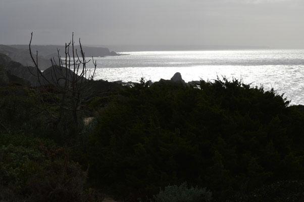 de kust is een uurtje verwijderd