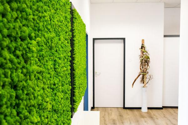 Grüne Bilderrahmen mit Moos hängen im Eingang eines hellen und freundlichen Büroflurs.