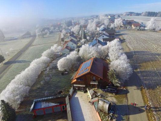 Drohnenflug über dem Liebhaldenweg 20 in Wutach