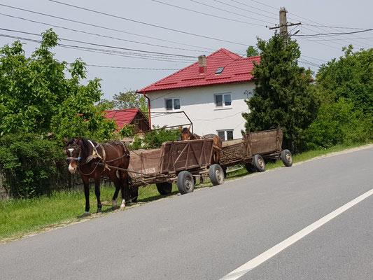 Pferdefuhrwerke