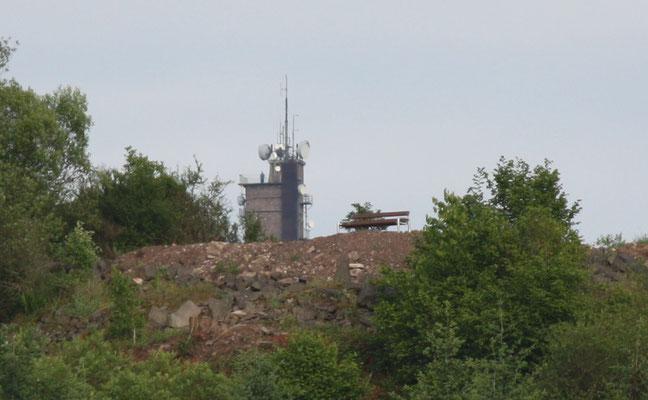 Wackepickerblick im Hintergrund der Potzbergturm