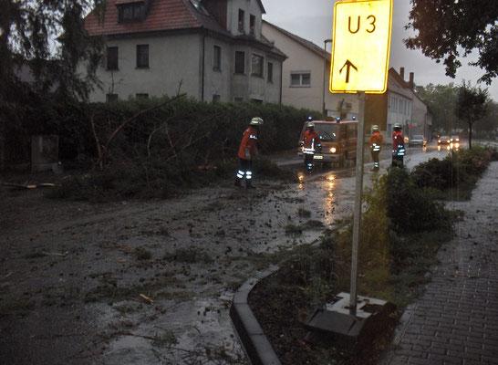 Sicherungsmassnahmen - Bahnhofstrasse, umgestürzter Baum im Frühjahr 2011