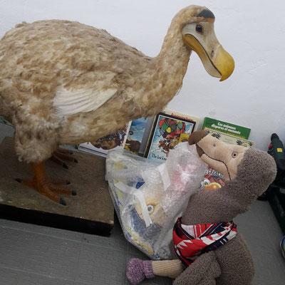 hier trifft Bobby auch den altehrwürdigen Dodohaus Dodo wieder