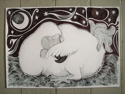 Verkauft: Schlafender Dodo