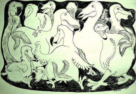 Dodo-Großfamilie