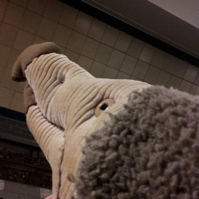 Bobby in der U-Bahn