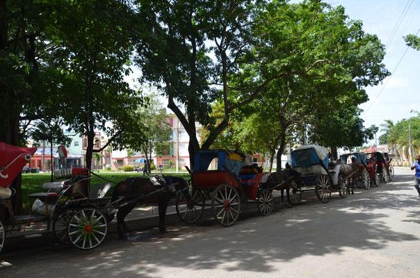 """""""Die Kutsche"""", typisches Transportmittel in unserer Stadt."""
