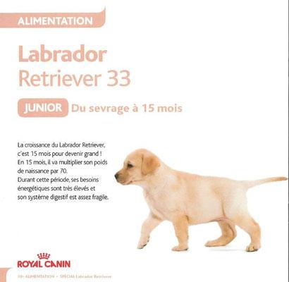Livret du Chiot en Spécial Labrador