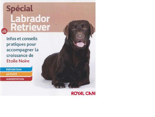 Livret sur le Labrador - ECLAIR
