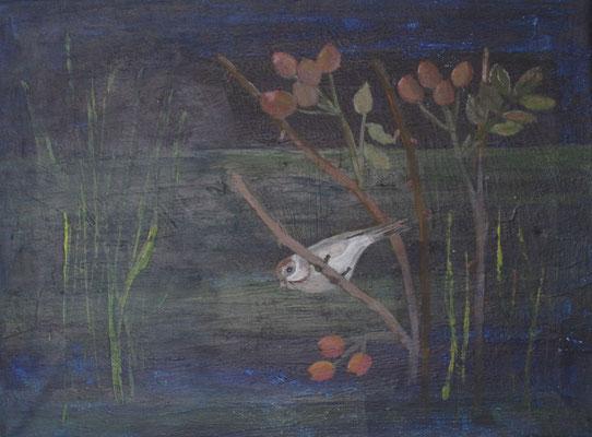 Spatz bei Hagebutten, 2018, Acryl auf Leinwand, 30 x 40 cm