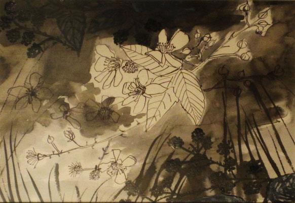 Brombeerzweig, 2016 Aquarell mit Tusche auf Papier, 30 x 20 cm