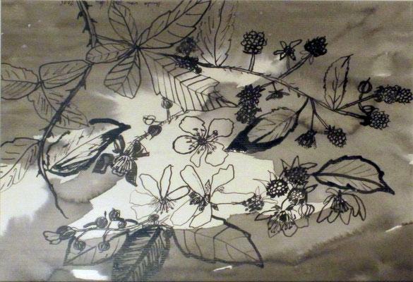 Bromberrzweig II, 2015, Aquarell und Tusche auf Papier, 30 x 20 cm