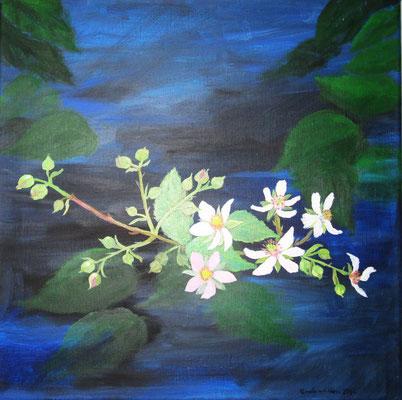 Blühender Brombeerzweig, 2016, Acryl auf Leinwand, 40 x 40 cm