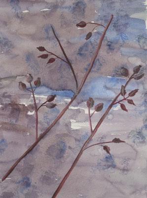 Hagebuttenzweig vor blauem Hintergrund, 2018, Aquarell auf Papier, 45 x 35 cm