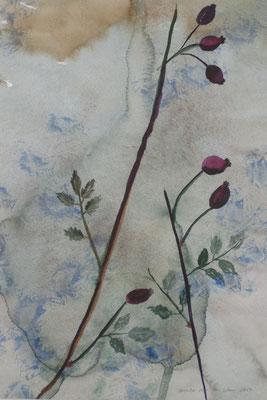 Hagebuttenzweig vor blauem Hintergrund, 2017, Aquarell auf Papier, 45 x 35 cm