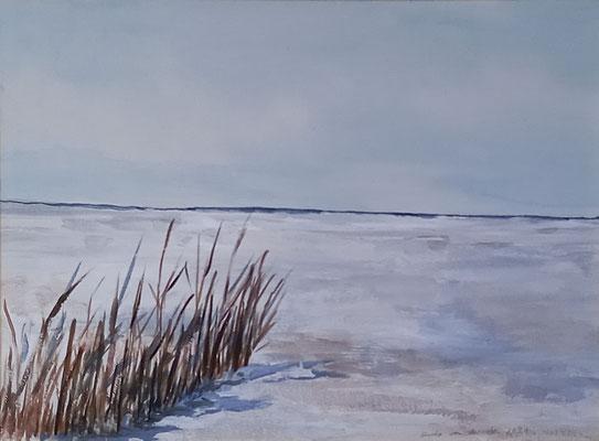 Weidenruten am Strand, 2021, Aquarell auf Papier,37 X 45 cm