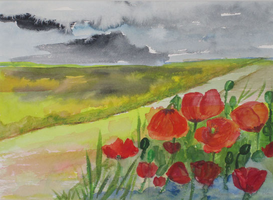 Mohn am Wegrand, 2018, Aquarell, 30 x 40 cm