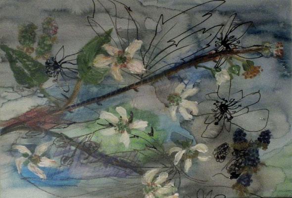 Brombeerzweig I, 2015, Aquarell und Tusche auf Papier, 30 x 20 cm