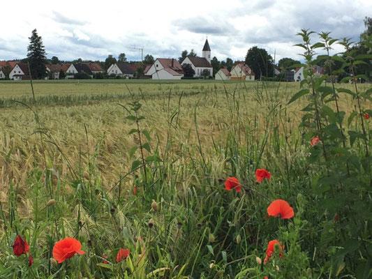Unsere Malschule befindet sich in Freienried, einem kleinen Dorf zwischen München und Augburg