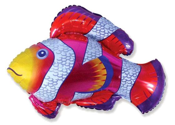 Рыба-клоун воздух 170 р., гелий 290 р.