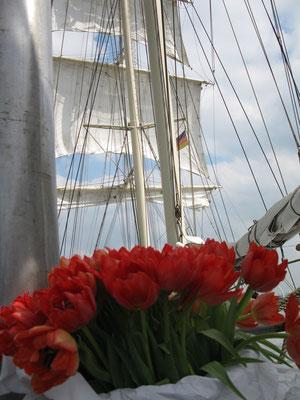 Hochzeit auf einem Schiff