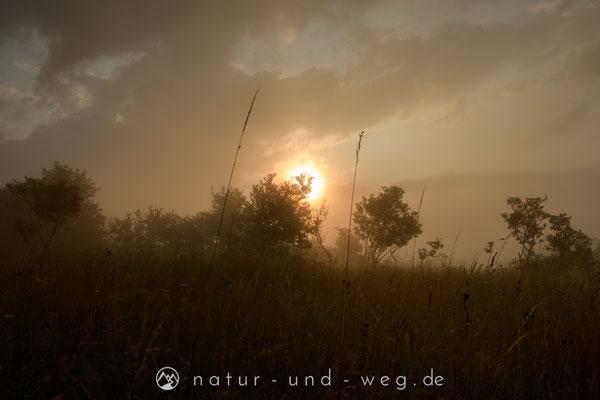 Der Nebel verschwand schnell - die Sonne auch ;-)