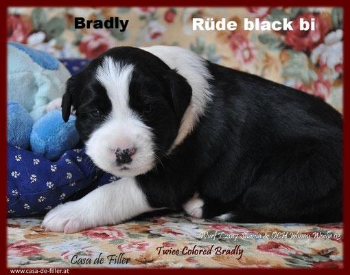 Bradly