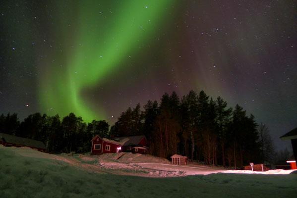 Nordlichter über unserer Huskyfarm