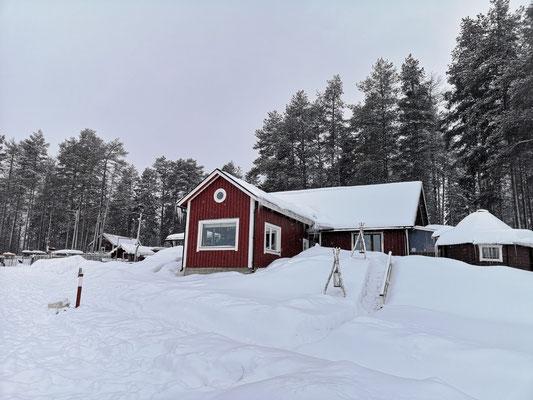 Den Winterurlaub auf der Huskyfarm verbringen wollen ...?!