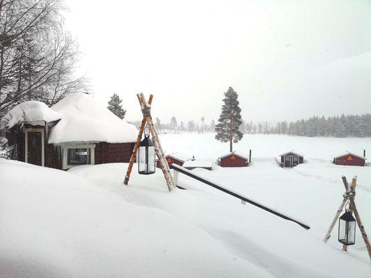 Huskyfarm im weissen Schnee bedeckt