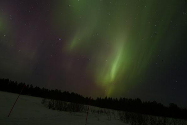 Nordlicht Alarm in Schweden