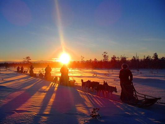 hundspannstur i solnedgången