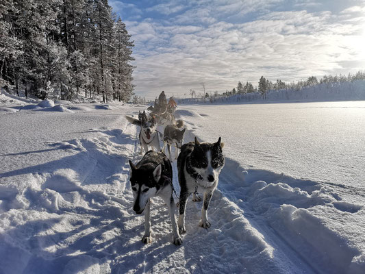 Outdoor Adventures in Lapland