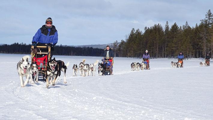 Den Winter im Norden Schwedens mit uns erleben...