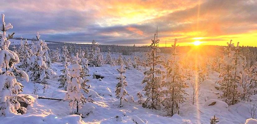 Schweden = Lappland = unberührte Natur