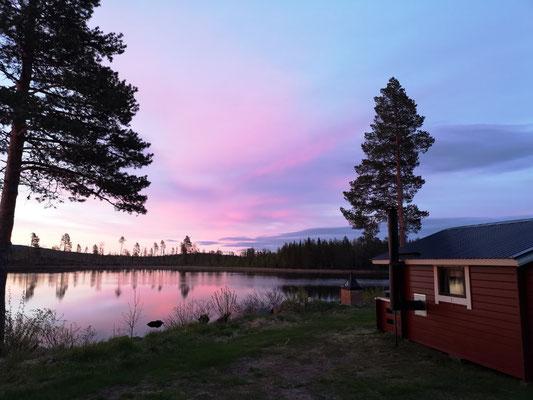 Huskyfarm & Mitternachtssonne in Lappland