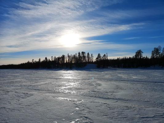 Eisige und schnelle Trails für unsere Huskytouren