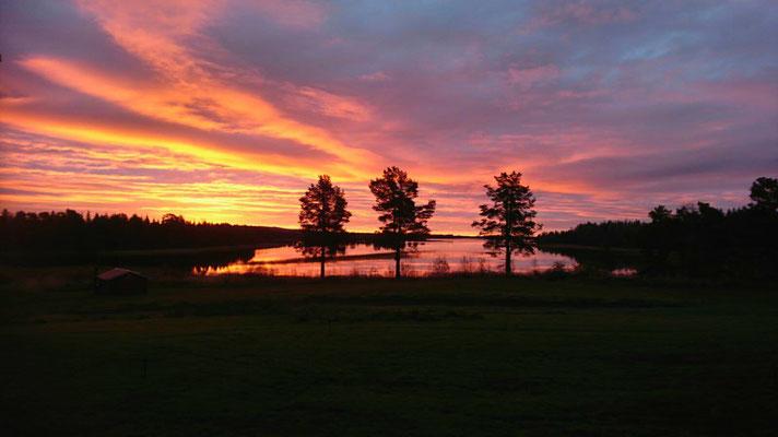 Huskyfarm bei Sonnenaufgang