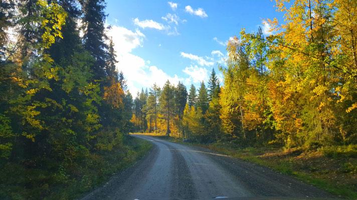 Wunderschönes Lappland im Herbst