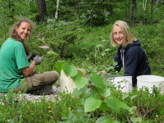Andrea und Mareike beim Steinesammeln im Wald